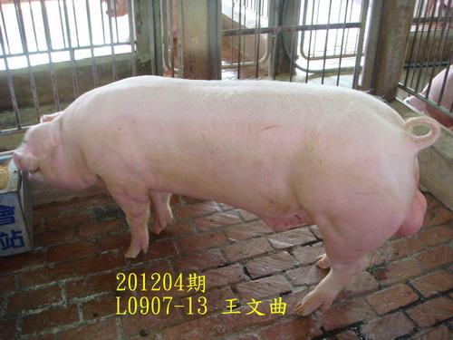 中央畜產會201204期L0907-13拍賣照片