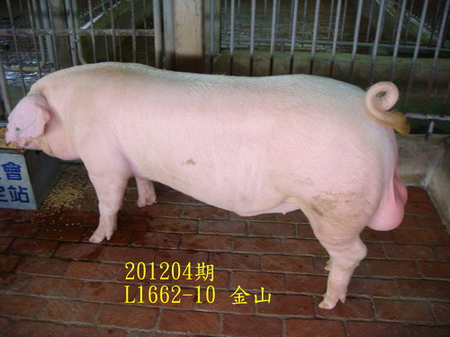 中央畜產會201204期L1662-10拍賣照片