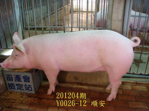 中央畜產會201204期Y0026-12拍賣照片