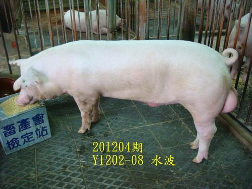 中央畜產會201204期Y1202-08拍賣照片