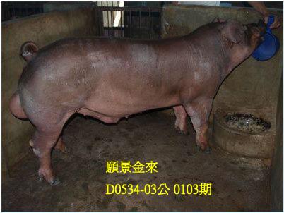台灣動物科技研究所竹南檢定站10103期D0534-03拍賣相片
