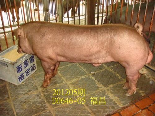 中央畜產會201205期D0646-05賣照片