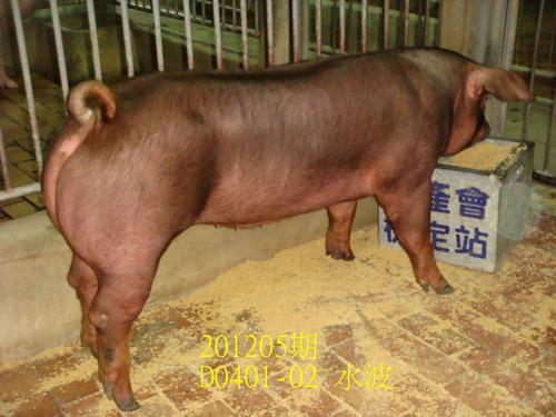 中央畜產會201205期D0401-02拍賣照片