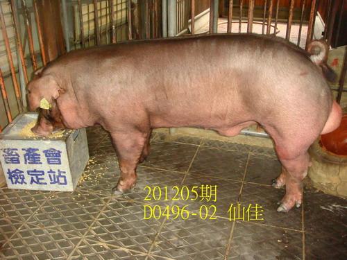 中央畜產會201205期D0496-02拍賣照片