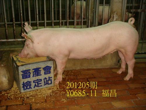 中央畜產會201205期Y0685-11拍賣照片