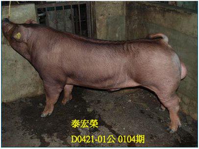 台灣動物科技研究所竹南檢定站10104期D0421-01拍賣相片