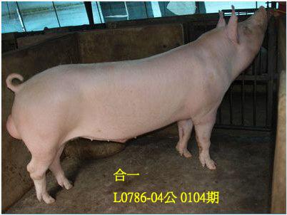 台灣動物科技研究所竹南檢定站10104期L0786-04拍賣相片