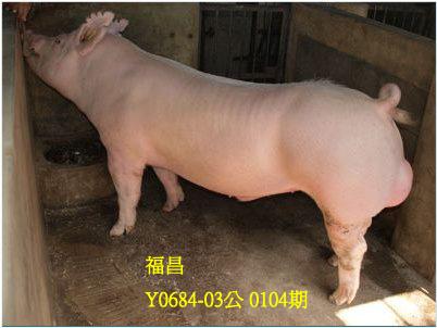 台灣動物科技研究所竹南檢定站10104期Y0684-03拍賣相片