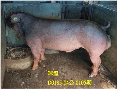 台灣動物科技研究所竹南檢定站10105期D0185-04拍賣相片