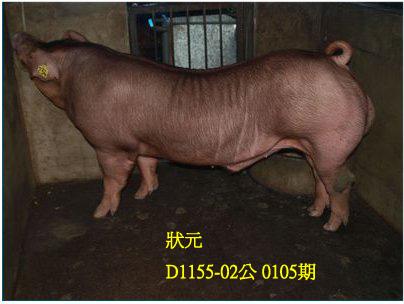 台灣動物科技研究所竹南檢定站10105期D1155-02拍賣相片
