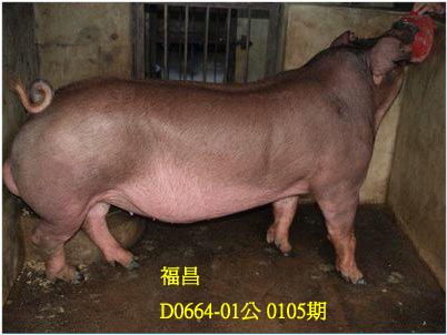 台灣動物科技研究所竹南檢定站10105期D0664-01拍賣相片