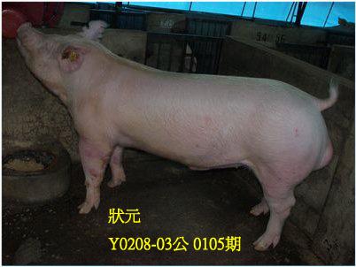 台灣動物科技研究所竹南檢定站10105期Y0208-03拍賣相片