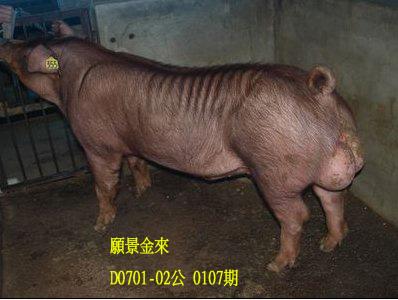 台灣動物科技研究所竹南檢定站10107期D0701-02拍賣相片