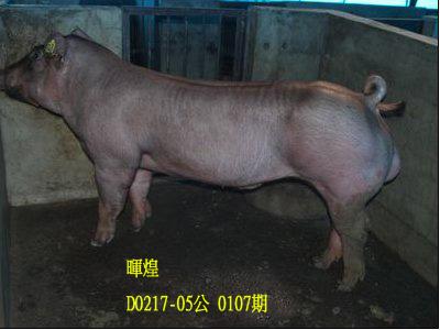 台灣動物科技研究所竹南檢定站10107期D0217-05拍賣相片