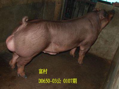 台灣動物科技研究所竹南檢定站10107期D0650-03拍賣相片
