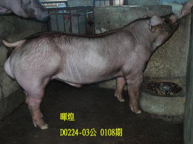 台灣動物科技研究所竹南檢定站10108期D0224-03拍賣相片