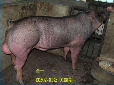 台灣動物科技研究所竹南檢定站10108期D002-01拍賣相片