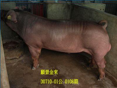 台灣動物科技研究所竹南檢定站10108期D0710-01拍賣相片