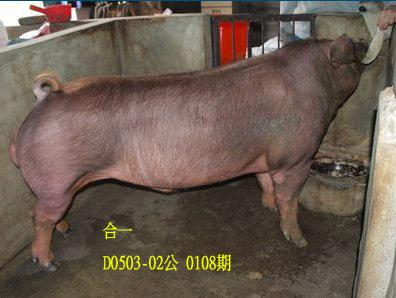 台灣動物科技研究所竹南檢定站10108期D0503-02拍賣相片