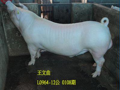 台灣動物科技研究所竹南檢定站10108期L0964-12拍賣相片