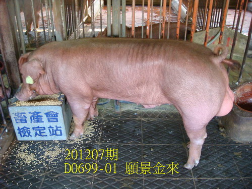 中央畜產會201207期D0699-01拍賣照片