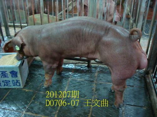 中央畜產會201207期D0706-07拍賣照片