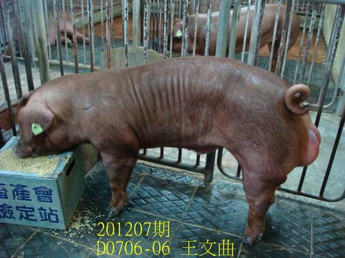 中央畜產會201207期D0706-06拍賣照片