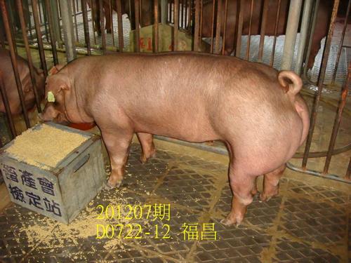 中央畜產會201207期D0722-12拍賣照片
