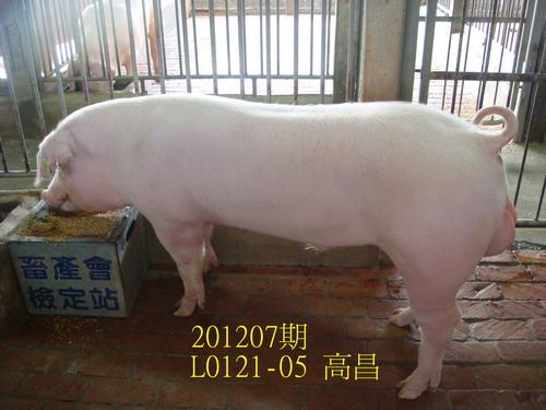 中央畜產會201207期L0121-05拍賣照片