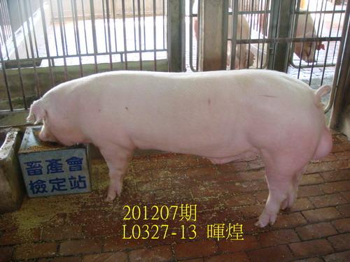 中央畜產會201207期L0327-13拍賣照片