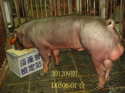 中央畜產會201209期D0506-01拍賣照片