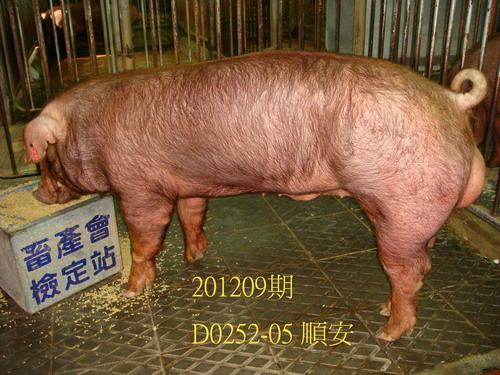 中央畜產會201209期D0252-05拍賣照片