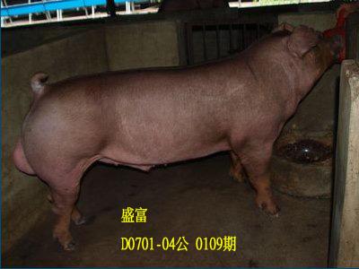 台灣動物科技研究所竹南檢定站10109期D0701-04拍賣相片