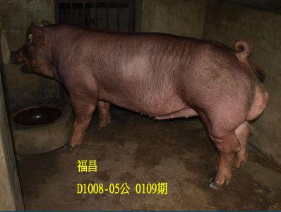 台灣動物科技研究所竹南檢定站10109期D1008-05拍賣相片