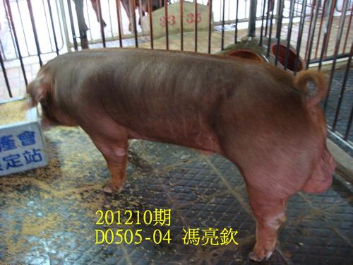 中央畜產會201210期D0505-04拍賣照片