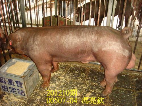 中央畜產會201210期D0507-04拍賣照片