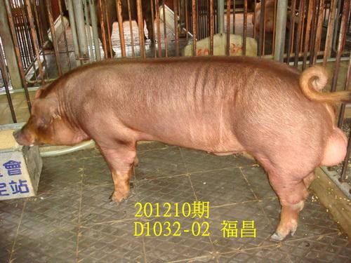 中央畜產會201210期D1032-02拍賣照片