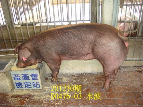 中央畜產會201210期D0476-03拍賣照片