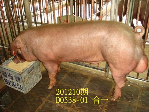 中央畜產會201210期D0538-01拍賣照片