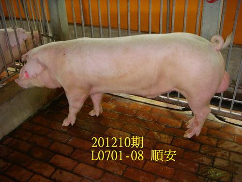 中央畜產會201210期L0701-08拍賣照片