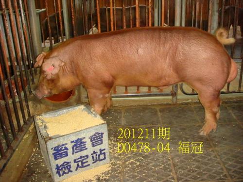 中央畜產會201211期D0478-04拍賣照片