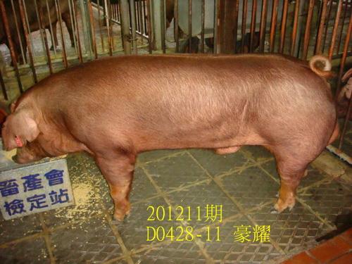 中央畜產會201211期D0428-11拍賣照片