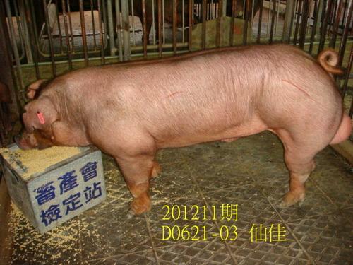 中央畜產會201211期D0621-03拍賣照片