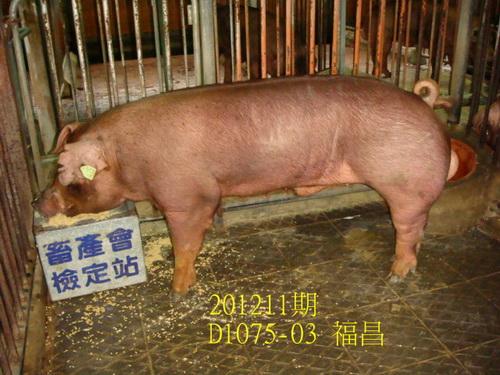 中央畜產會201211期D1075-03拍賣照片