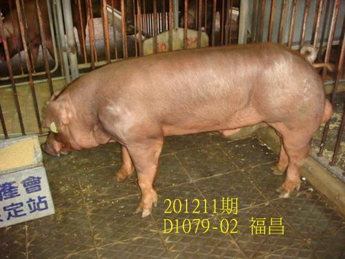 中央畜產會201211期D1079-02拍賣照片