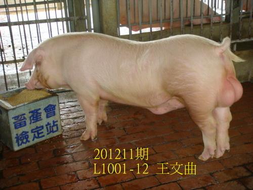 中央畜產會201211期L1001-12拍賣照片