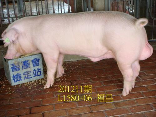 中央畜產會201211期L1580-06拍賣照片