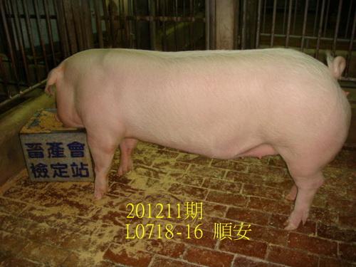 中央畜產會201211期L0718-16拍賣照片