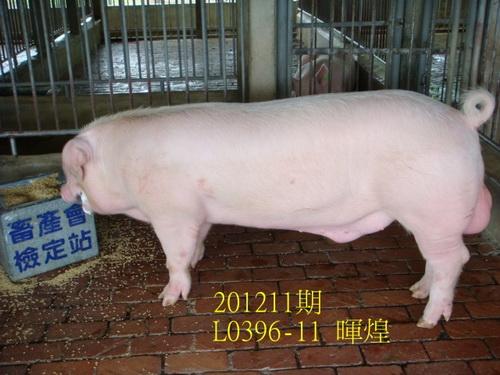 中央畜產會201211期L0396-11拍賣照片