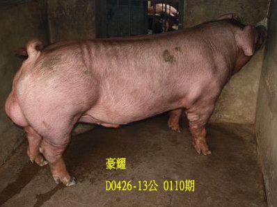 台灣動物科技研究所竹南檢定站10110期D0426-13拍賣相片